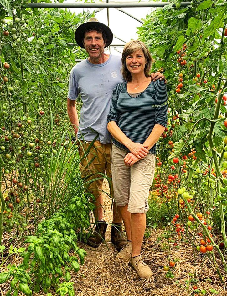 Teals Somerset - Wild Garden Article