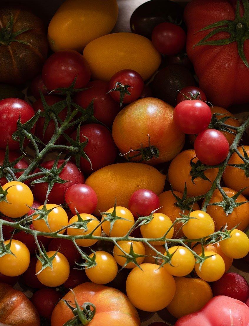 Fresh Fruit and Veg Teals